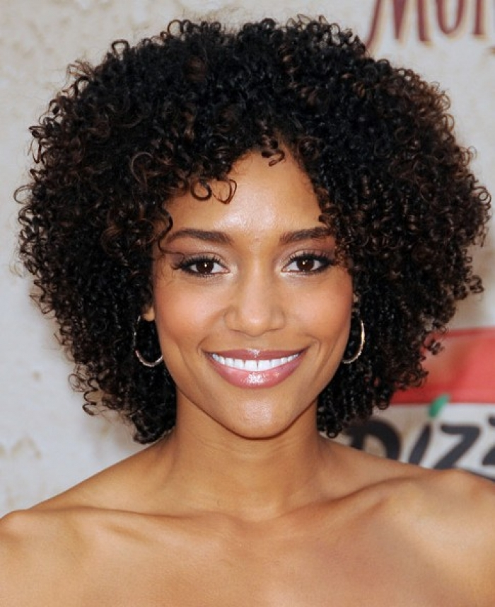 Super Short And Curly Natural Hairstyles Hairstyles For Women Draintrainus