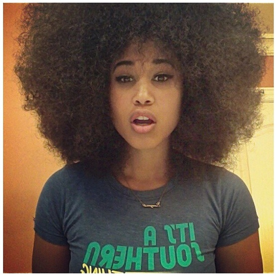 Big And Bouncy Afro Black Women S Natural Hair Styles