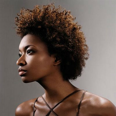The African American natural hairstyle chronicles