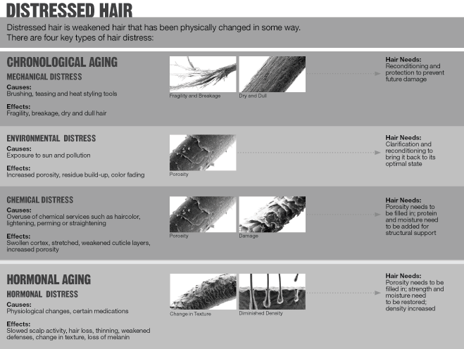 10 Different Ways To Stop Your Hair From Shedding