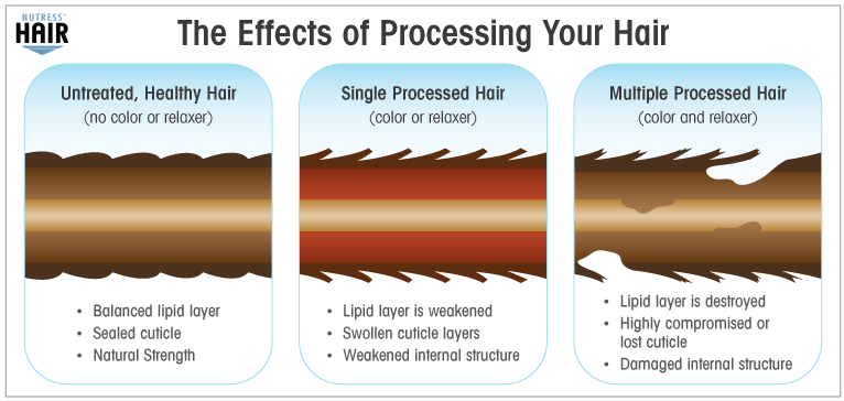 processinghairinfograph